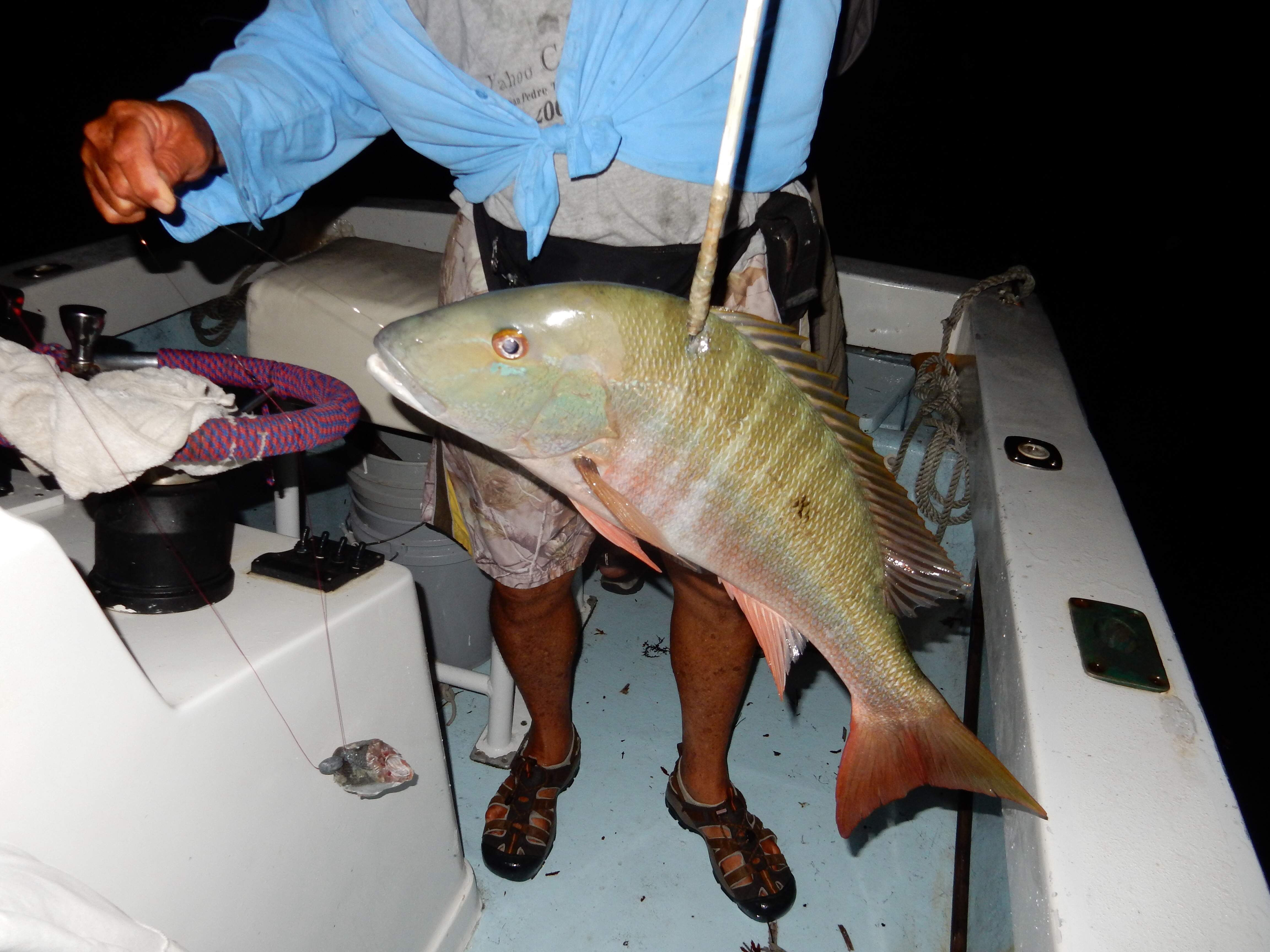 Belize and night fishing our travel blog for Is tomorrow a good fishing day